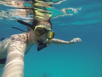 Snorkeling Wasini - awesome!