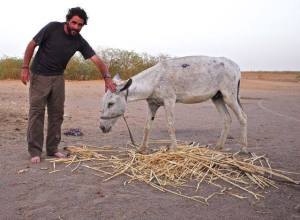 Meet Grant, James Augustus Grant, new expedition member and donkey extraordinaire.